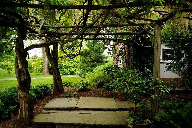 fotos de um jardim lindo : fotos de um jardim lindo:Pra se ter um lugar lindo e aconchegante não precisa luxo, verde