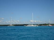 Barcos, naves, naus...