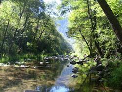 Sungai air jernih/bersih