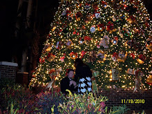 I Said YES!!!! November 19, 2010