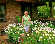 Sister Kathy in a bed of daisies