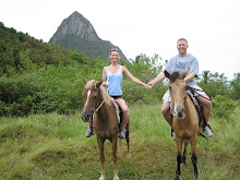 riding horses in St. Lucia