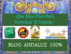 BLOG. ANDALUZ 100%100 AÑOÑO