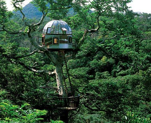 Beach Rock Treehouse - Okinawa