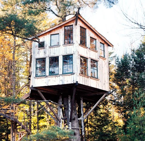 eXTREME tREEHOUSES