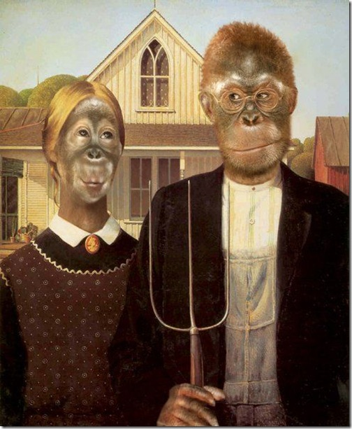 Monkey Look Like People Seen On www.coolpicturegallery.us