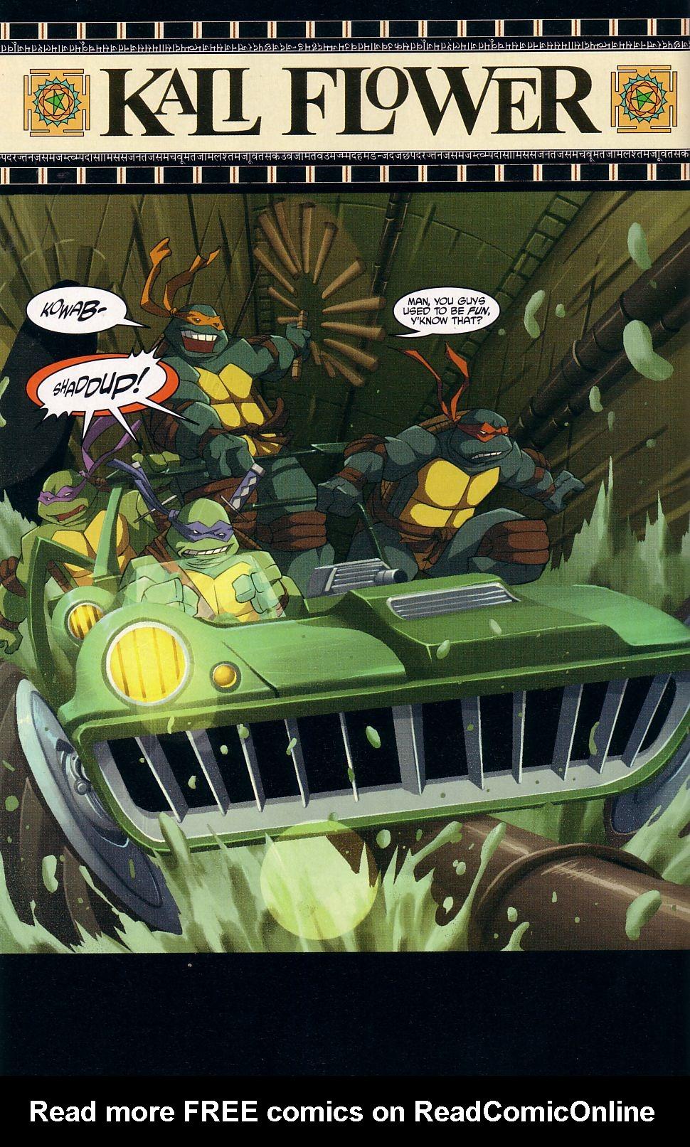 Teenage Mutant Ninja Turtles (2003) chap 7 pic 10