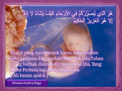 Embriologi Menurut Al-Quran