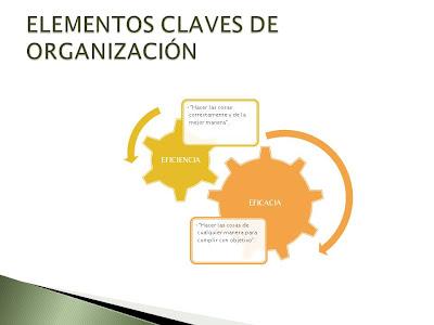 Administracion online segunda etapa del proceso for Organizacion de un vivero