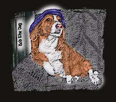 Bob The Dog...