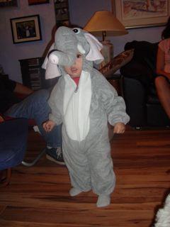 [elephant+2]