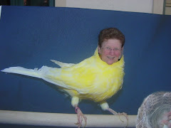 Big Bird