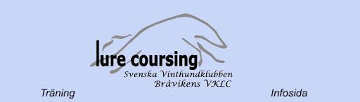Bråvikens Lure Coursing