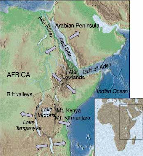 east african rift Remote sensing data has given a unique perspective on the east african rift system, allowing both large regional structures and more subtle features to be identified.