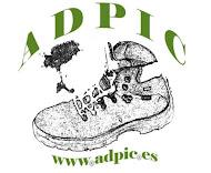 ADPIC