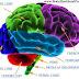 Dimanakah Wanita Di Dalam Otak Lelaki ?