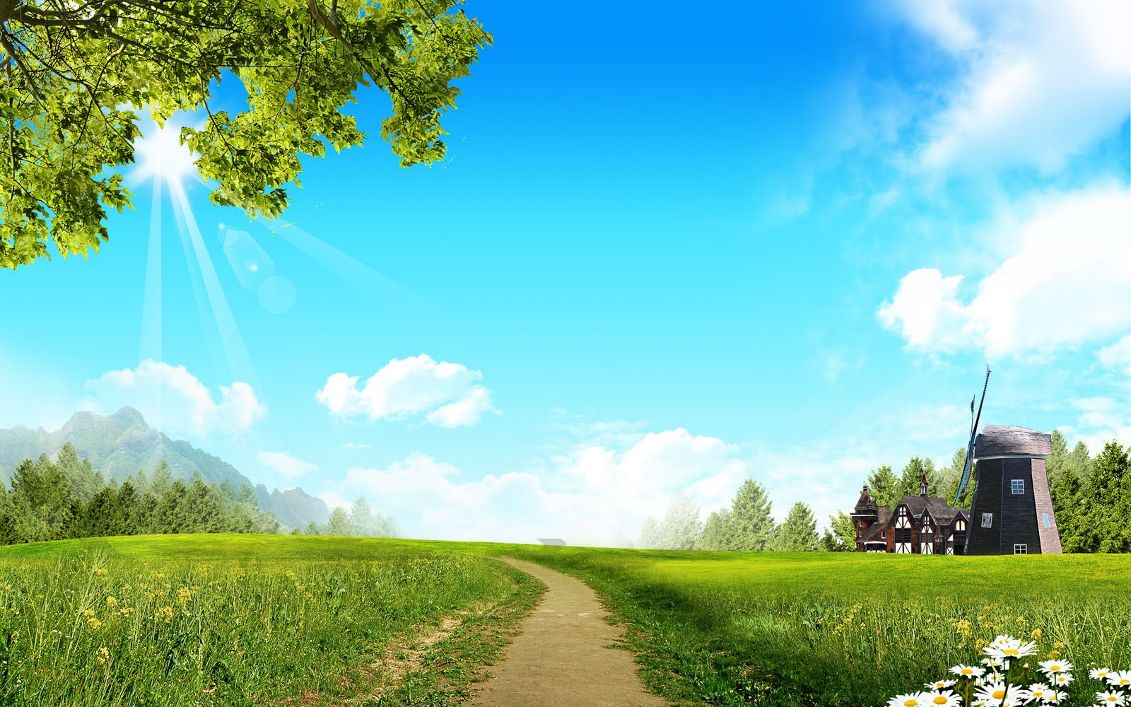 Pleasant Green Sky Background Wallpapers