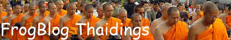 FrogBlog - Thaidings