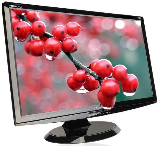 Mega Curso LCD y Plasma 2010 Zalman_ZM-M240W_LCD