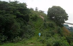 Raiatea hike