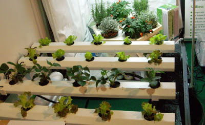 Aprender a escuchar jardin hidrop nico - Jardin hidroponico ...