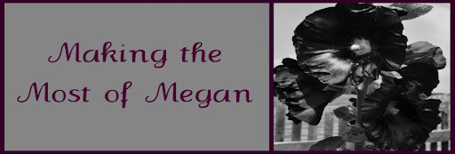 Making the Most of Megan