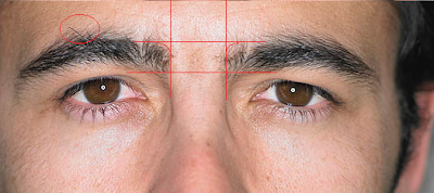 brows1 How to groom your own eyebrows   a guide for men.