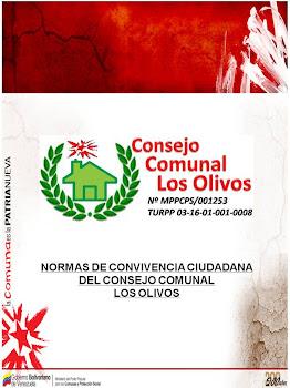 """NORMAS DE CONVIVENCIA CONSEJO COMUNAL """"LOS OLIVOS"""""""
