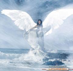 angel gris