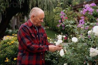anziano in giardino