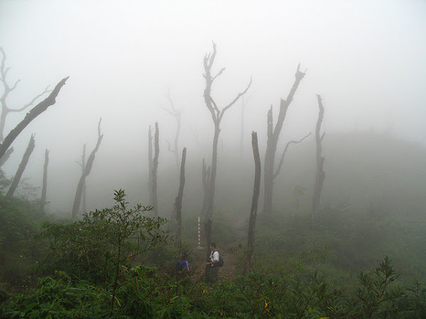 Climbers at Fansipan mountain trail