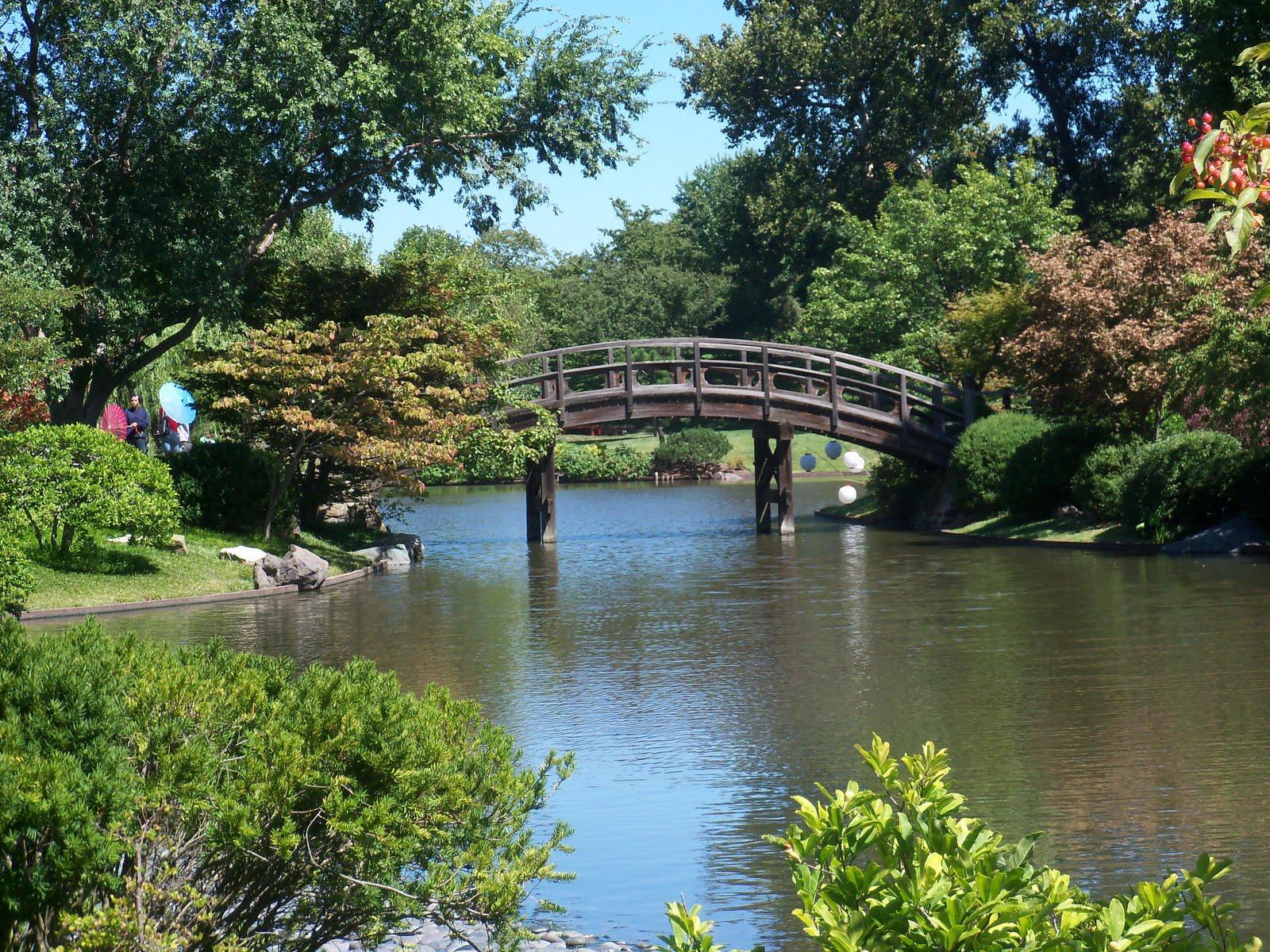 The perfect thyme japanese festival at missouri botanical for Japanese botanical garden