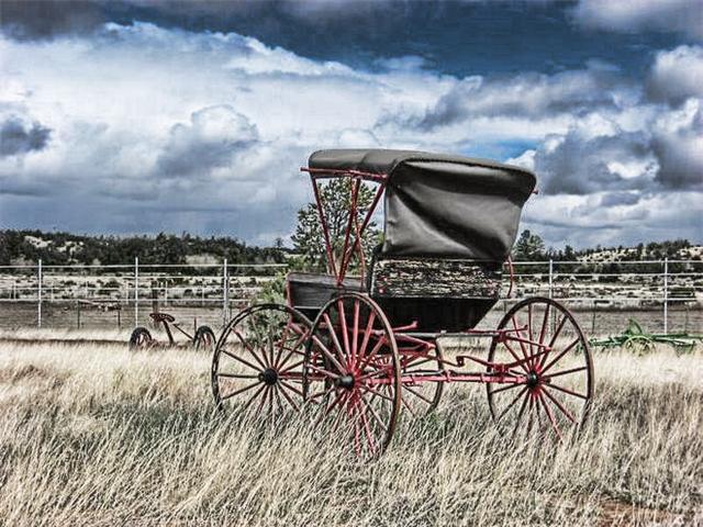 Ric's wagon