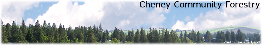 Cheney Community Forestry