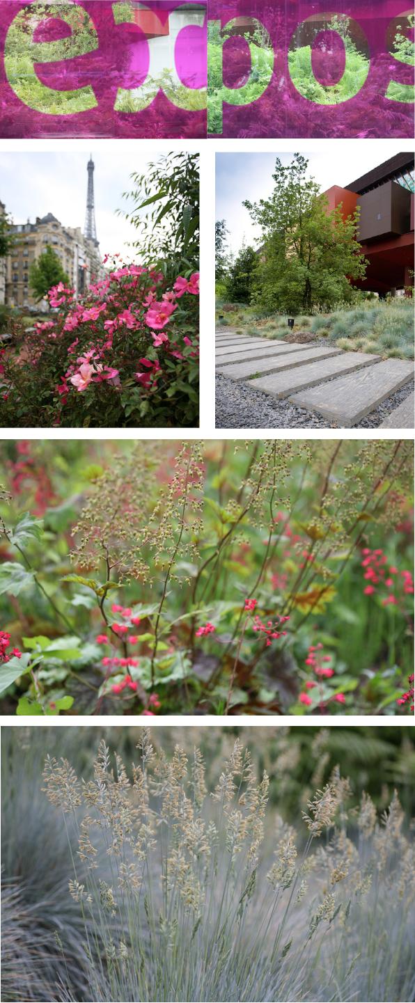 Gartenfotografie gartenblick le jardin du mus e du quai for Jardin quai branly