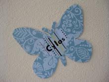Cylas' Butterfly