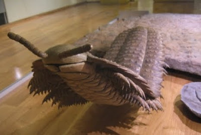 史前蜈蚣 -  2.6米的巨型史前蜈蚣