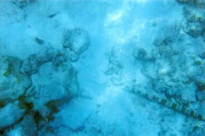 世界11大海底墳墓6 娜塔莉‧赫洛威的遺骸?