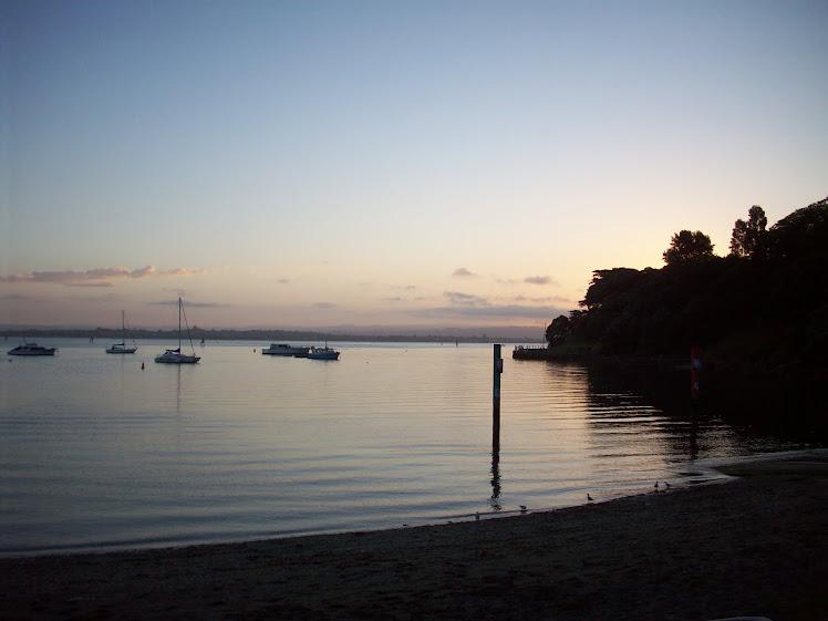 Tauranga Harbor