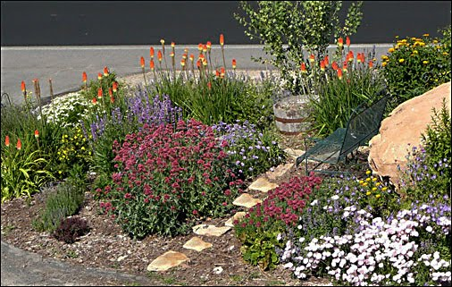 High altitude gardening long blooming perennials long blooming perennials mightylinksfo