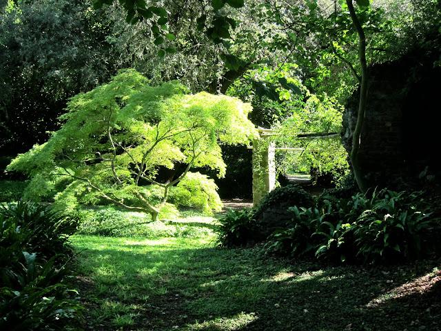Torrinonews il giardino di ninfa - Il giardino di ninfa ...