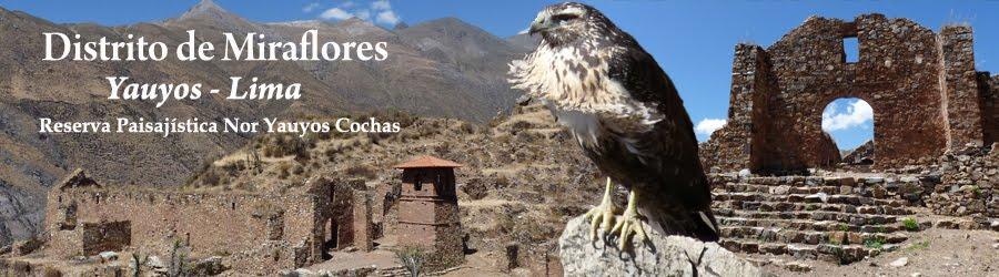 Distrito de Miraflores (Yauyos - Lima)