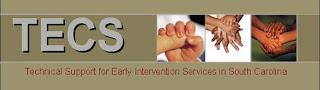 logo of TECS