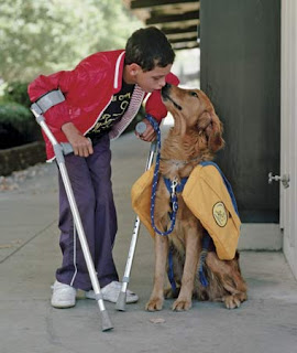 boy with crutches and service dog