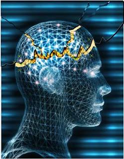 epileptic brain