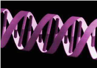 genetic double helix