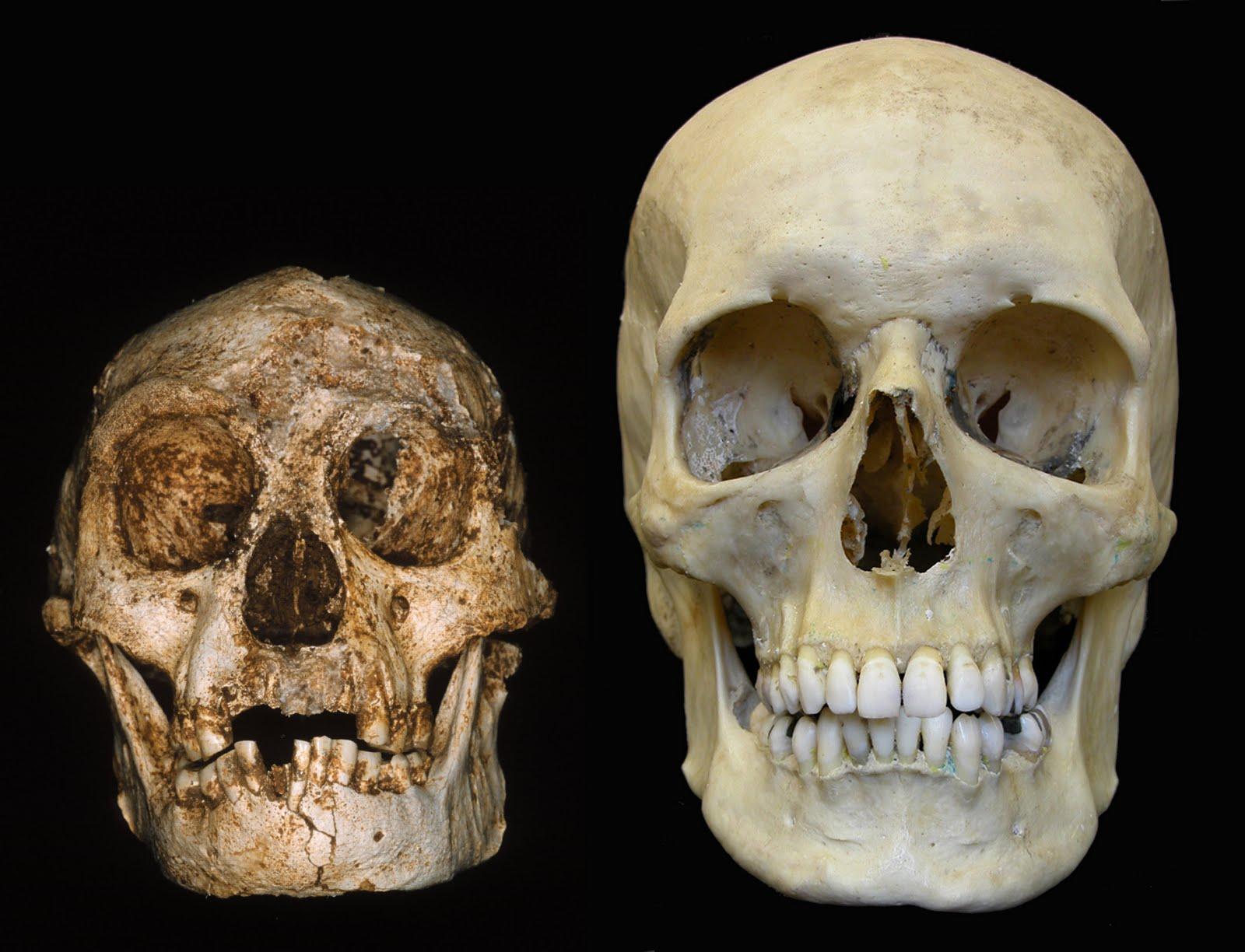 archaeology prehistoric dating methods
