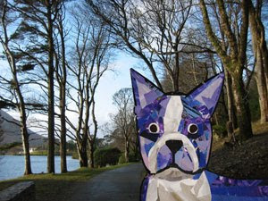 Bosty the Boston Terrier by collage artist Megan Coyle