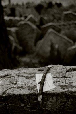 El silencio-Alejandra Pizarnik