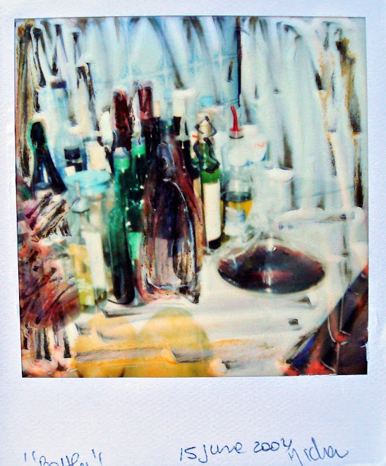 polaroid manipulation